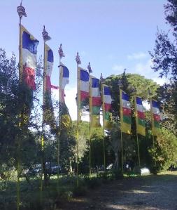 Le bandiere,qui complesse, delle preghiere