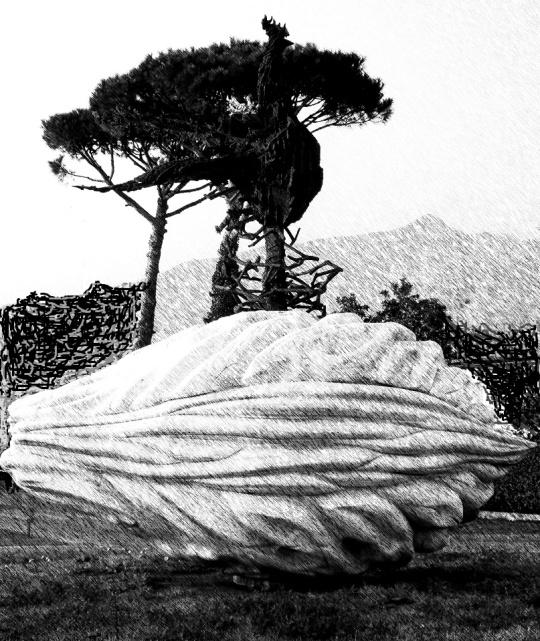 Il gallo nero rivolto ad est, sulla via dei marmi che fu tracciata a suo tempo da Michelangelo