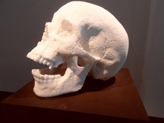 Skull, cranio di Fabio Viale