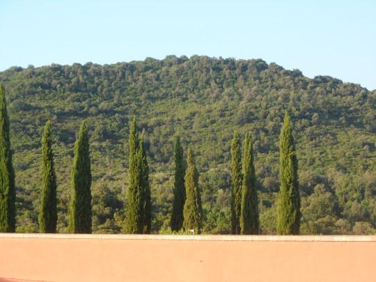 Rocca di Frassinello ,scorcio della campagna circostante.