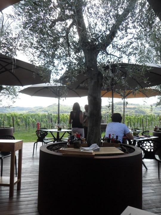 Balenata in mente l'idea, alla signorina nella fotografia, di fotografare i vari calici di vino,  ecco che si mette in posizione per scattare!