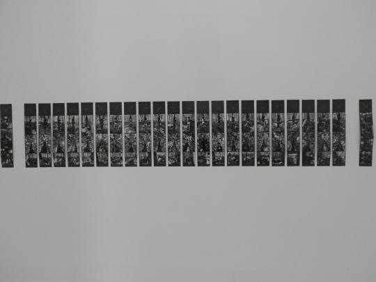 Alberto Carneiro Opera Museu Nacional de Arte Contemporânea do Chiado MNAC  Lisbon