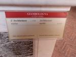 didascalia de ; 'l'architettura ' del Giambologna. Museo del Bargello Firenze.