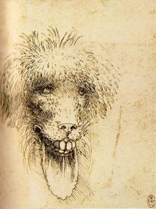 Leonardo;  due studi di animali grotteschi/chimerici (prodotto di fantasia).  Il secondo dei due. Anno D. 1510 circa.