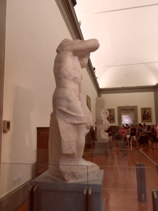 Michelangelo Buonarroti Incompiuto e NON non finito      Prigione II profilo destro   per la tomba di Papa Giulio II a Roma      Galleria dell'Accademia       -Firenze-