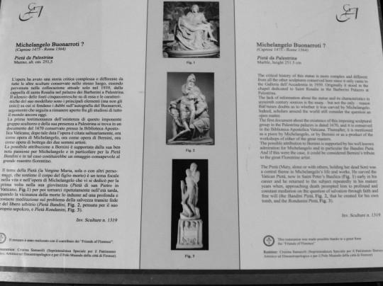 Michelangelo          Buonarroti      Pietà da Palestrina Didascalia  Galleria dell'Accademia    - Firenze  -