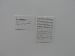 Museu de Arte Contemporânea da Fundação de Serralves Porto Portugal       didascalia