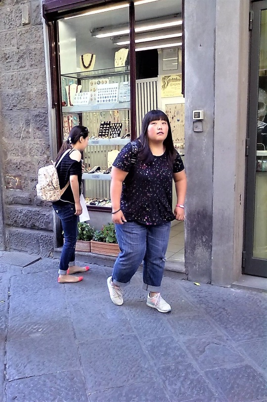Via dei Calzaiuoli Firenze         continua...