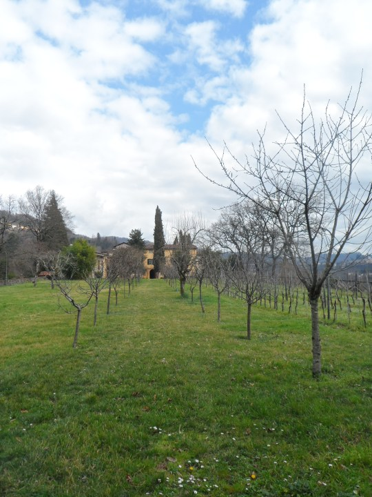 Casa eremo  di Giovanni Pascoli Castelvecchio Lucca           giardino