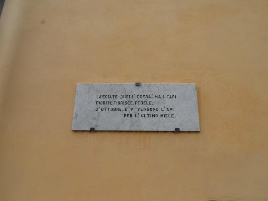 Casa eremo  di Giovanni Pascoli Castelvecchio Lucca             versi