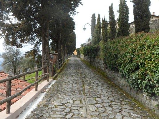 Casa  eremo  di Giovanni Pascoli Castelvecchio di Lucca        Viale d' ingresso